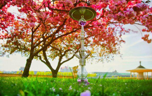 Ocean Hookah Euphoria Japanischer Garten Poster A2